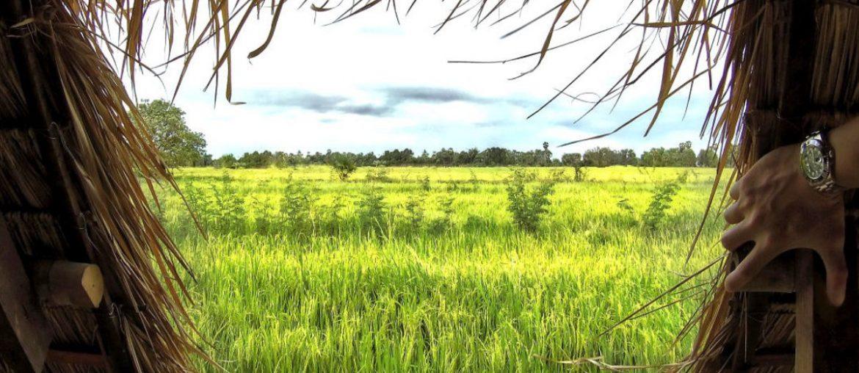 Off-Grid Bungalow in Rural Vietnam /// Vinjatek