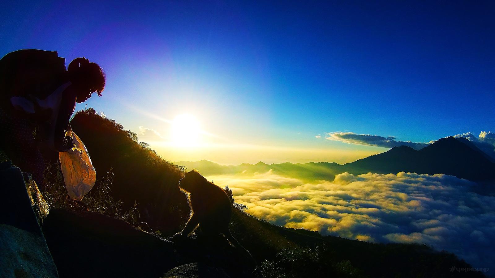 Monkey Sunrise over Mount Batur /// Vinjabond